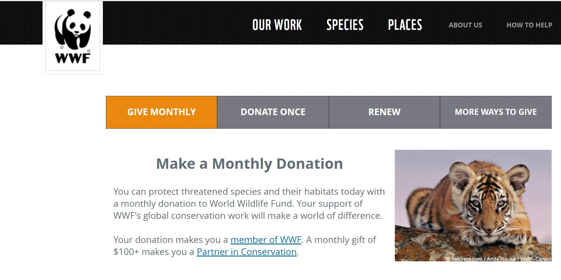 WWF - ホワイトスペースとは?デザインの重要性や効果的な使い方まとめ