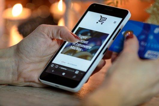holiday shopping 1921658 640 530x353 - ワードプレスでecサイトや通販サイトの作り方は?初心者には絶対おすすめしないけども…